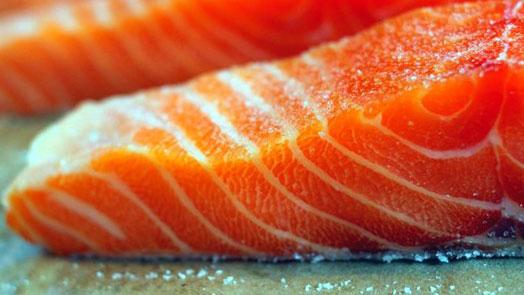 Оборудование для Семги, Полезные свойства Семги, Вид лососевых рыб