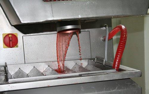 Инъектирование семги и подкрашивание